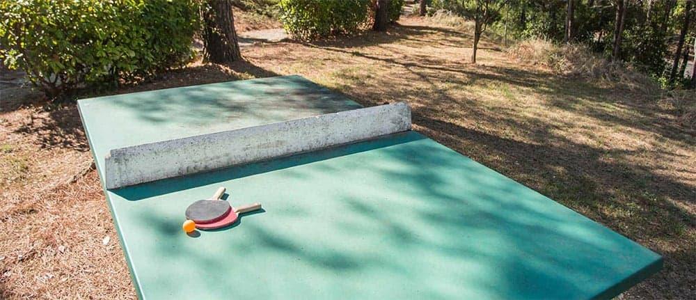 Une table de ping pong et d'autres espaces sont à votre disposition pour vous divertir avec vos amis et vos voisins.